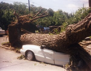 How business interruption insurance saves your business