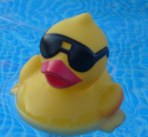 Creative Commons rubber duck by Jessica Bee_Flickr